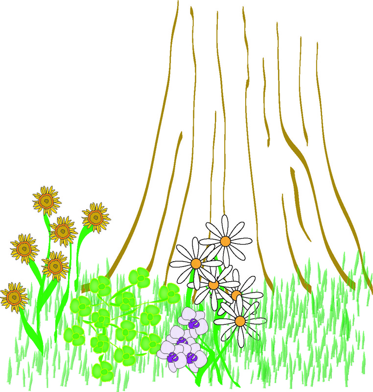 flowers, grass, tree picture